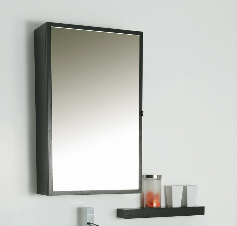 Specchio contenitore 50x80 cm